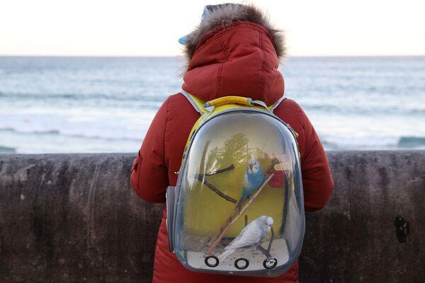 Žena s papoušky v batohu u oceánu v Sydney v Austrálii - Sputnik Česká republika