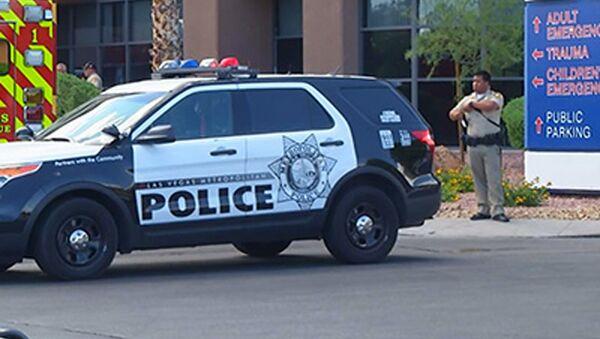 Policejní automobil v USA. Ilustrační foto - Sputnik Česká republika