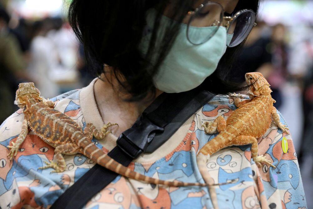 Žena s gekonem na Pet Expo Thajsko v Bangkoku