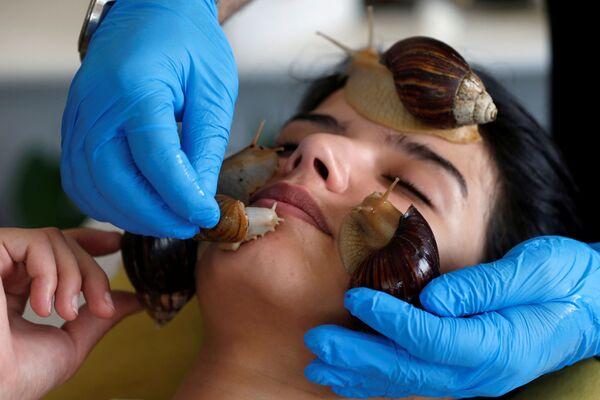 Косметическая процедура при помощи гигантских африканских улиток в салоне красоты в Аммане - Sputnik Česká republika