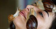 Kosmetické ošetření pomocí obřích afrických šneků v salonu krásy v Ammánu, Jordán