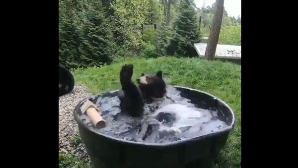 Hop do vody - Sputnik Česká republika