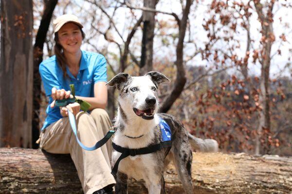 Trenér Dr. Romane Cristescu se fotí se psem. Austrálie, 16. ledna 2020. - Sputnik Česká republika