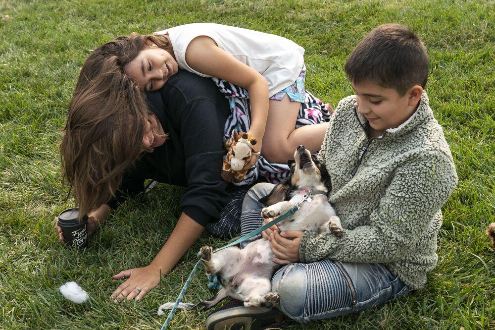 Děti si hrají se psem v asistenčním centru pro oběti požáru.