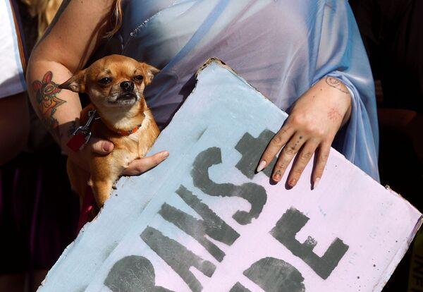 Demonstrantka nese psa během pochodu London Trans Pride 2020 v Londýně ve Velké Británii. - Sputnik Česká republika