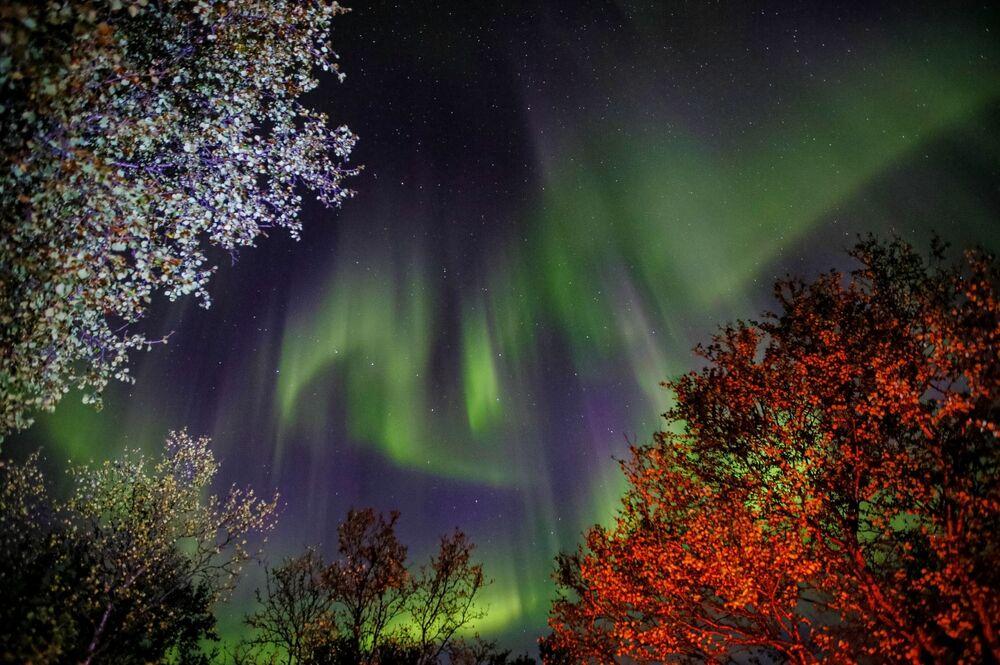 Severní záře v Murmanské oblasti