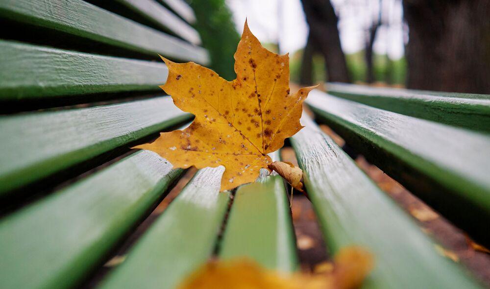 Podzimní barvy petrohradské Letní zahrady.