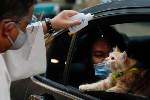 Kněz kropí svěcenou vodou kočku na Filipínách. - Sputnik Česká republika