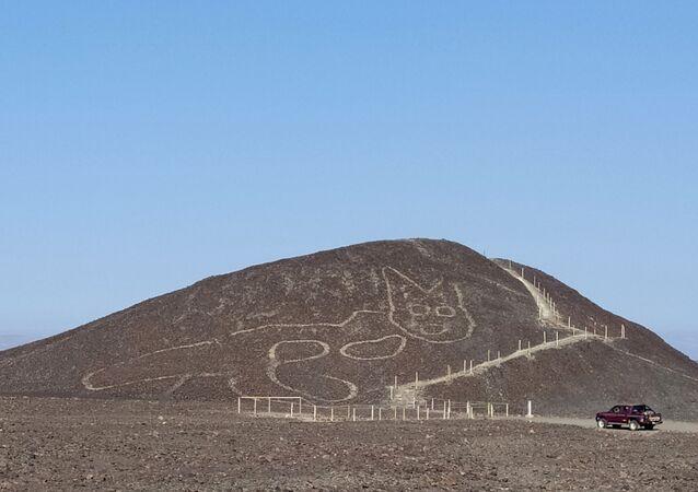 Geoglyf kočky v Peru