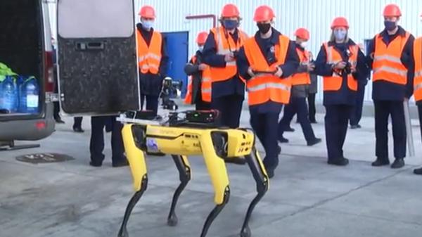 Americký robotický pes byl zpozorován, jak pracuje na čtvrtém jaderném reaktoru v Černobylu - Sputnik Česká republika