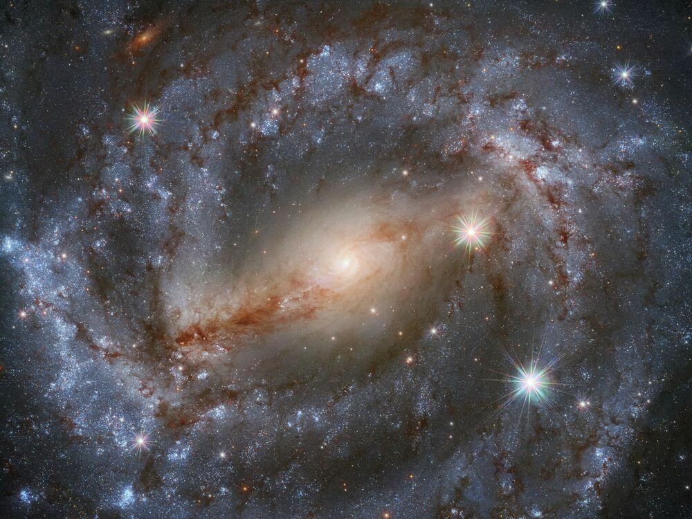 Spirální galaxie NGC 5643, souhvězdí Vlk