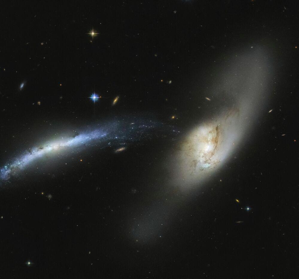 Galaxie NGC 2799, souhvězdí Rys