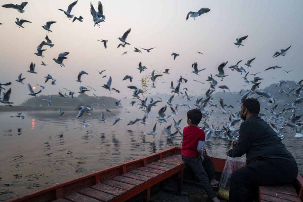 Otec a syn krmí racky na břehu řeky Jamuna za mlhavého rána v Novém Dillí