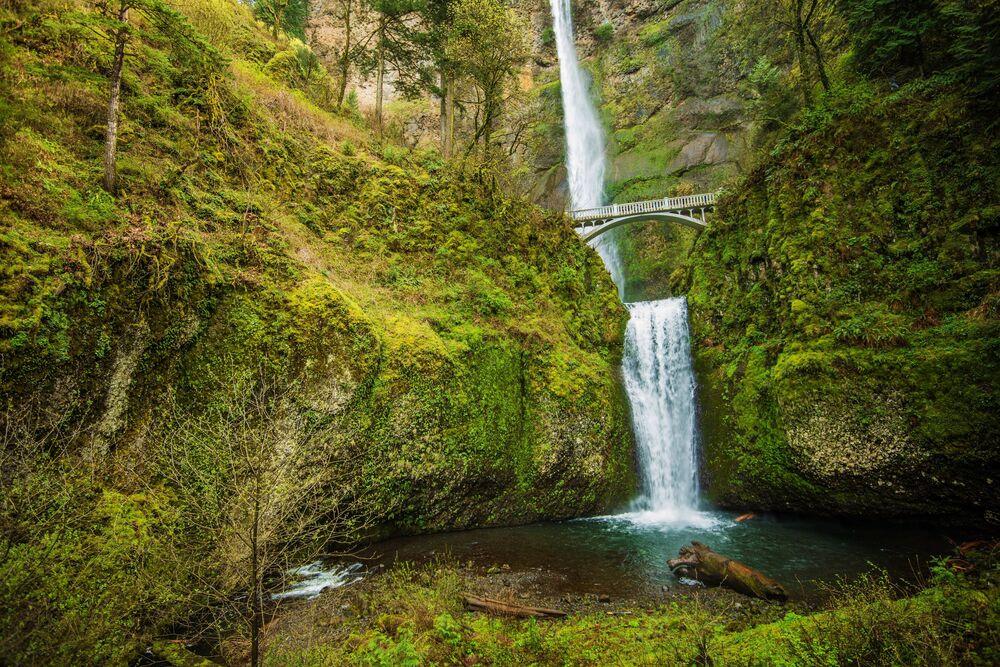 Most přes vodopády Multnomah v kaňonu řeky Columbia, Oregon, USA