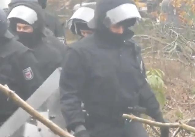 Němečtí policisté sundávají ekoaktivisty ze stromů v Dannenrodském lese