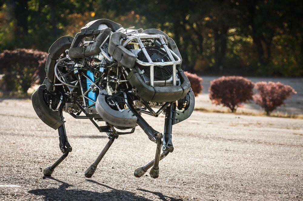 WildCat, nejrychlejší čtyřnohý robot, který dokáže běžet rychlostí 32 km/h, manévruje a udržuje rovnováhu.