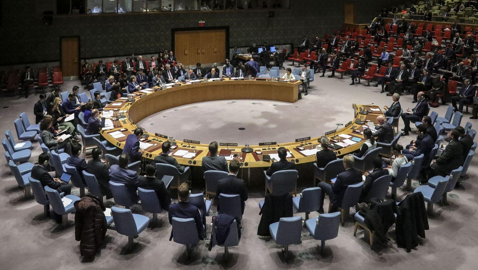 Zasedání Rady bezpečnosti OSN. Ilustrační foto - Sputnik Česká republika, 1920, 04.03.2021