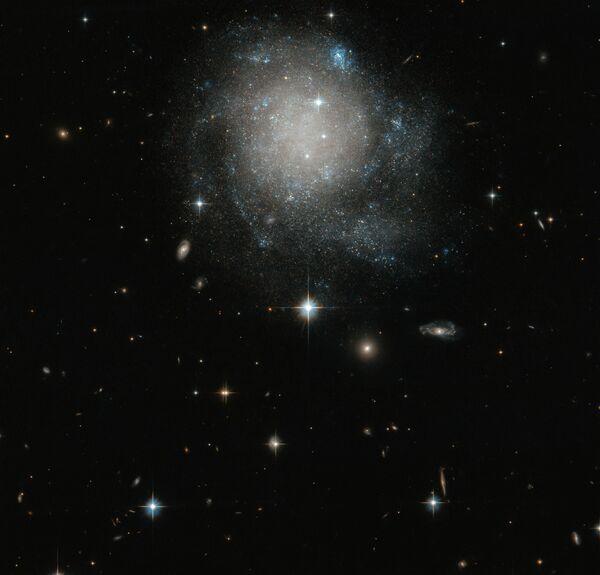 Astronomové pořídili novou fotografii spirální galaxie UGC 12588.  - Sputnik Česká republika