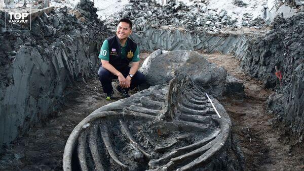 Thajský ministr životního prostředí Varawut Silpa- archa při vykopávkách starověké velryby - Sputnik Česká republika