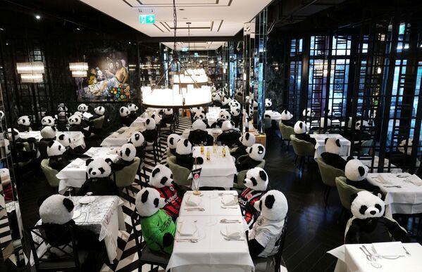 """Plyšové pandy jako součást umělecké instalace """"Panda mie"""", jež má za účel zvýšit povědomí veřejnosti o dopadu covidového lockdownu na gastronomii ve Frankfurtu nad Mohanem. - Sputnik Česká republika"""