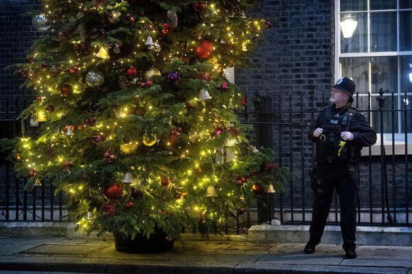 Policista u vánočního stromku v Londýně - Sputnik Česká republika