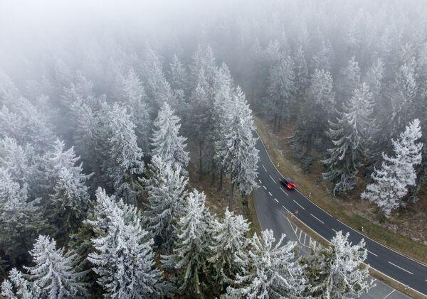 Pohled na zasněžený les poblíž Frankfurtu nad Mohanem, Německo - Sputnik Česká republika