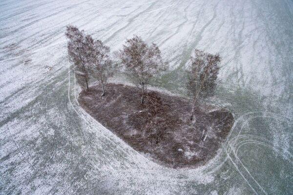 Sněží i na poli v Novosibirsku - Sputnik Česká republika