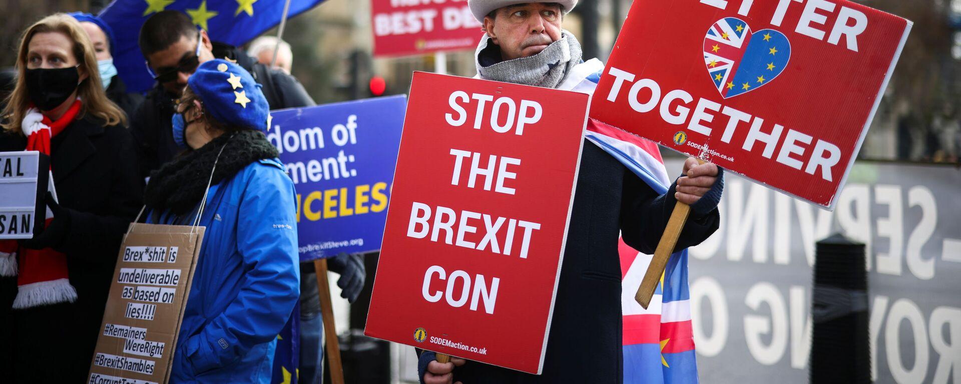 Demonstrace proti Brexitu před komorami parlamentu v Londýně - Sputnik Česká republika, 1920, 13.12.2020