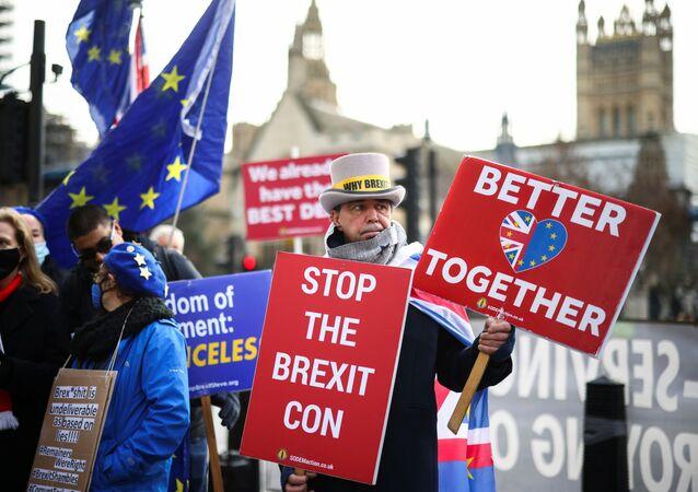 Demonstrace proti Brexitu před komorami parlamentu v Londýně