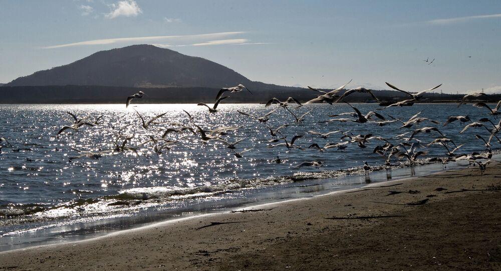 Břeh Južnokurilského zálivu na ostrově Kunašir