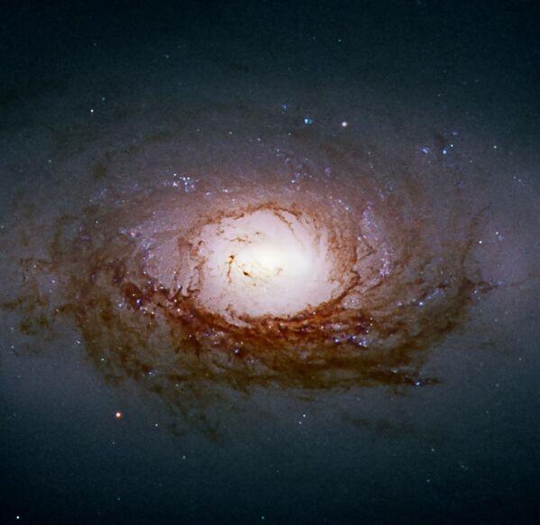 Galaxie NGC 3626 v souhvězdí Lva - Sputnik Česká republika