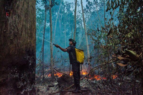 Hašení lesních požárů v Brazílii - Sputnik Česká republika