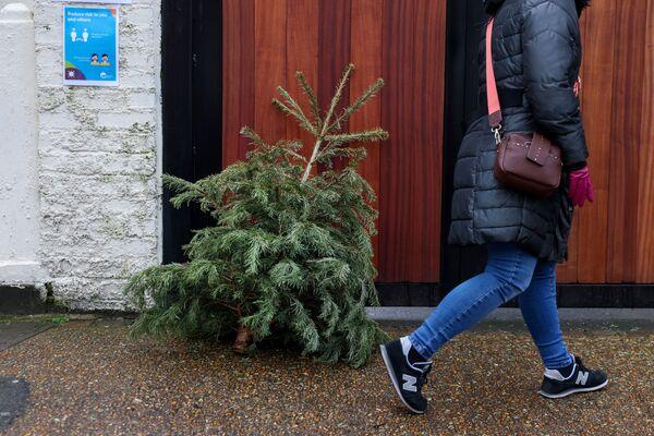 """Zrušené lety, uzavřené hranice, zničené Vánoce: """"Mutantní"""" kmen covidu-19 způsobil chaos ve Velké Británii - Sputnik Česká republika"""