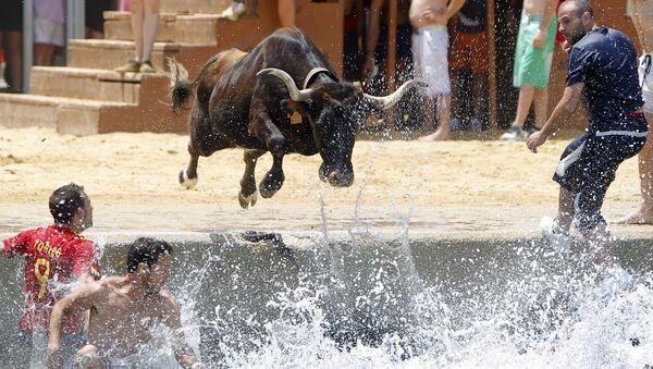 Býk skáče do moře během španělského festivalu Bous a la mar - Sputnik Česká republika