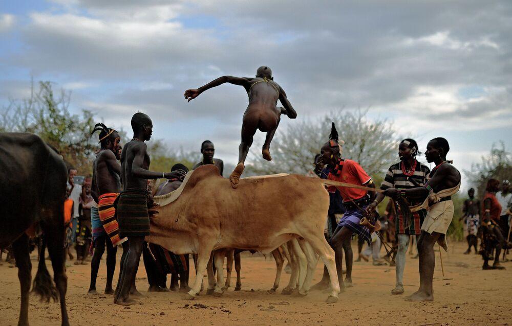 Muž při skoku přes býka v Etiopii