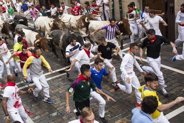 Účastníci festivalu San Fermín při běhu s býky v Pamploně - Sputnik Česká republika