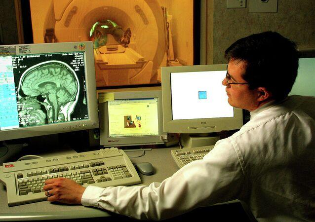 Výzkum mozku