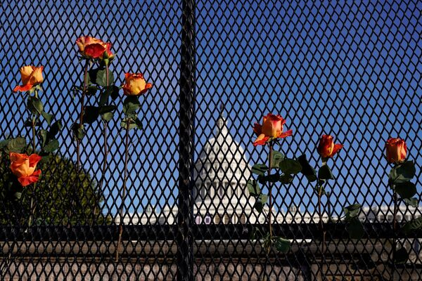 Květiny na plotě naproti budově Kapitolu ve Washingtonu - Sputnik Česká republika