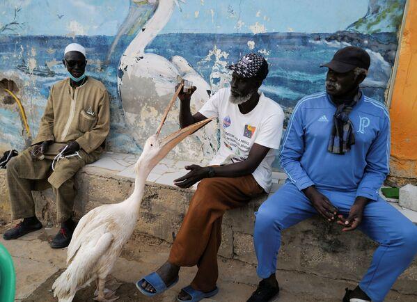 Dakar, Senegal.  - Sputnik Česká republika