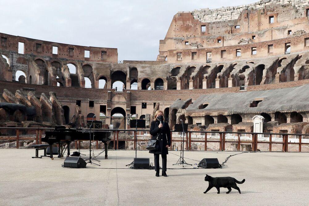Koloseum, Řím