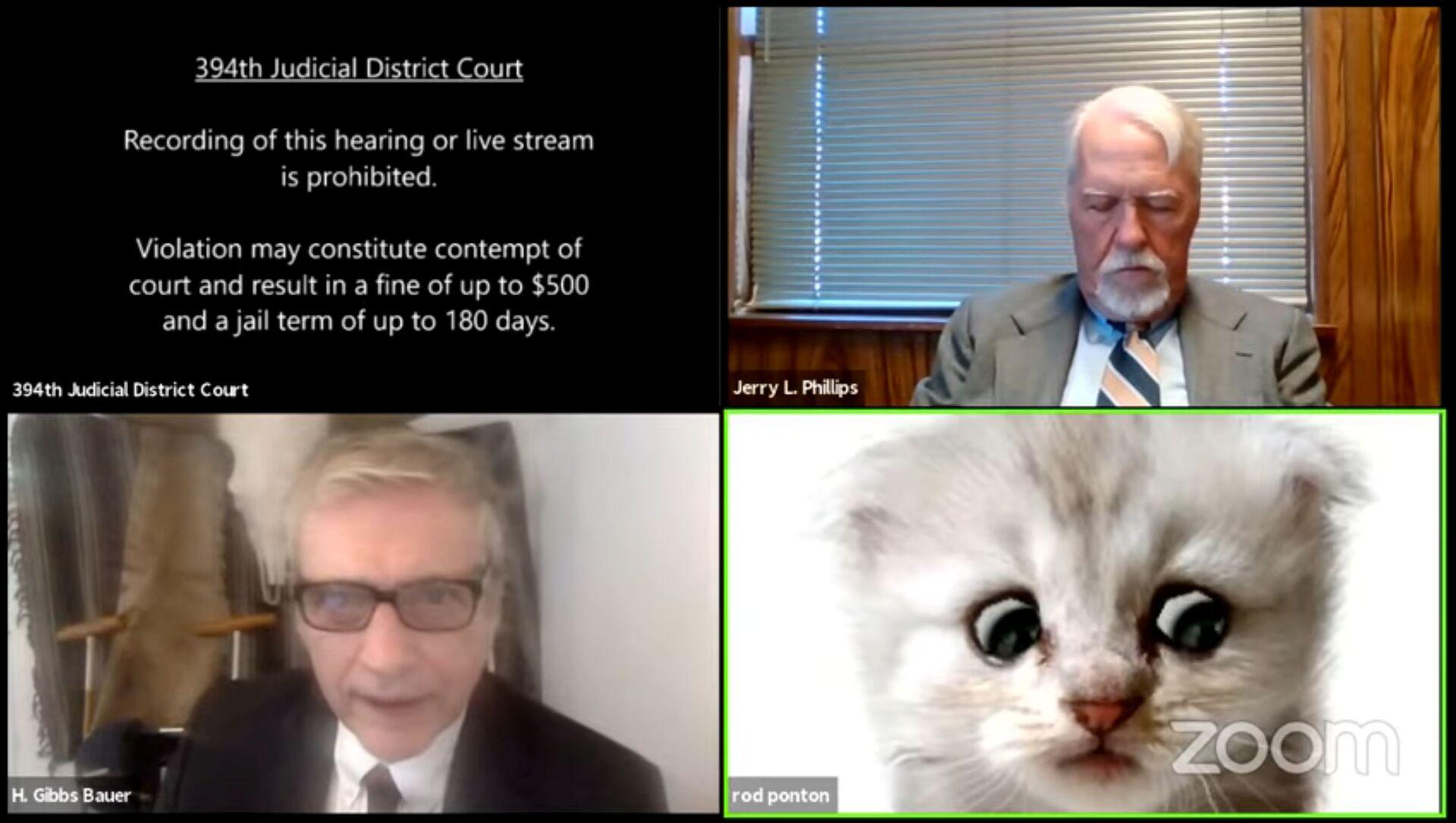 Právník v Texasu se omylem připojil k online soudnímu jednání s kočičím filtrem - Sputnik Česká republika, 1920, 10.02.2021