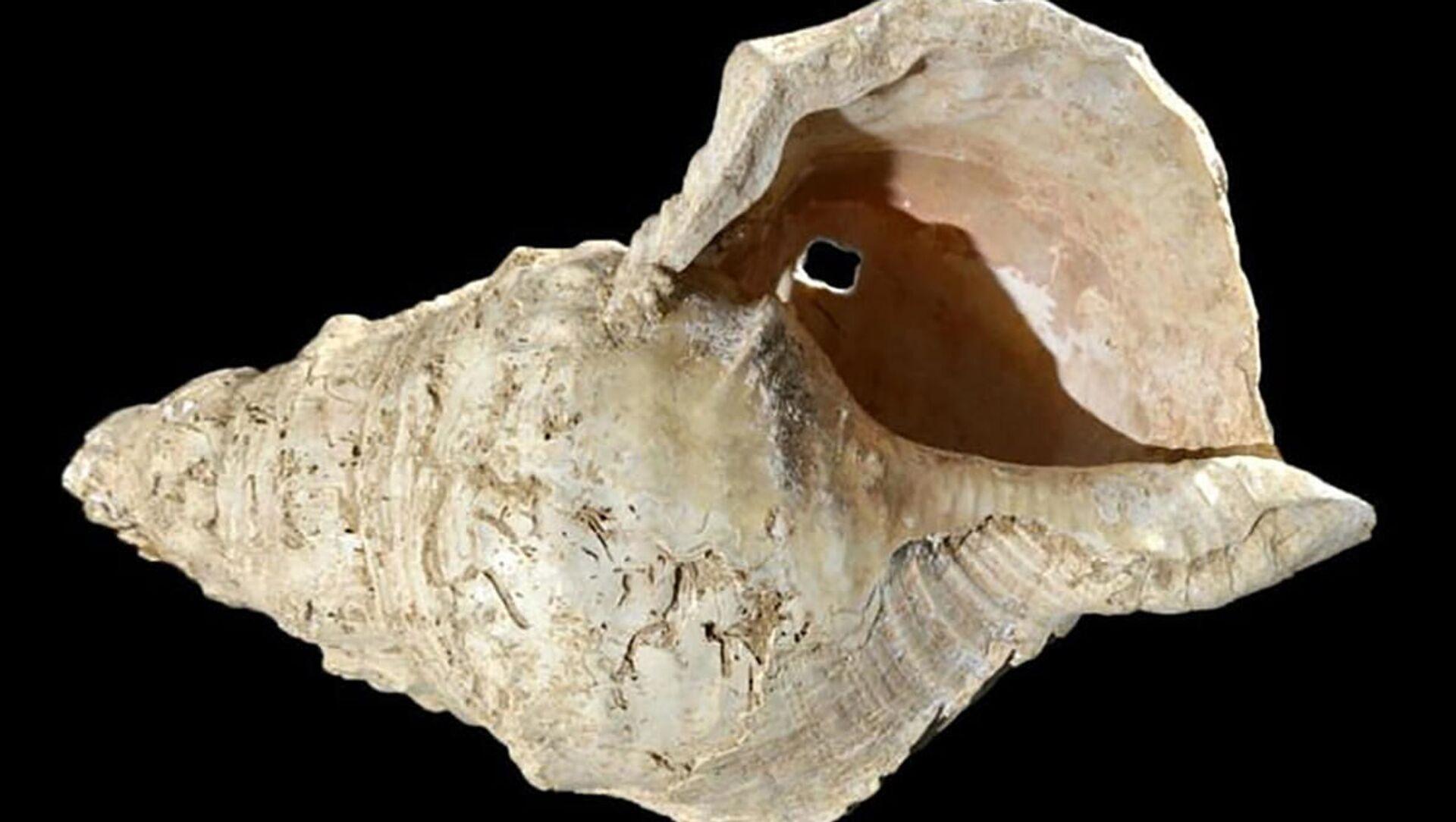 Lastura, která byla nalezena v jeskyni Marsoulas - Sputnik Česká republika, 1920, 12.02.2021