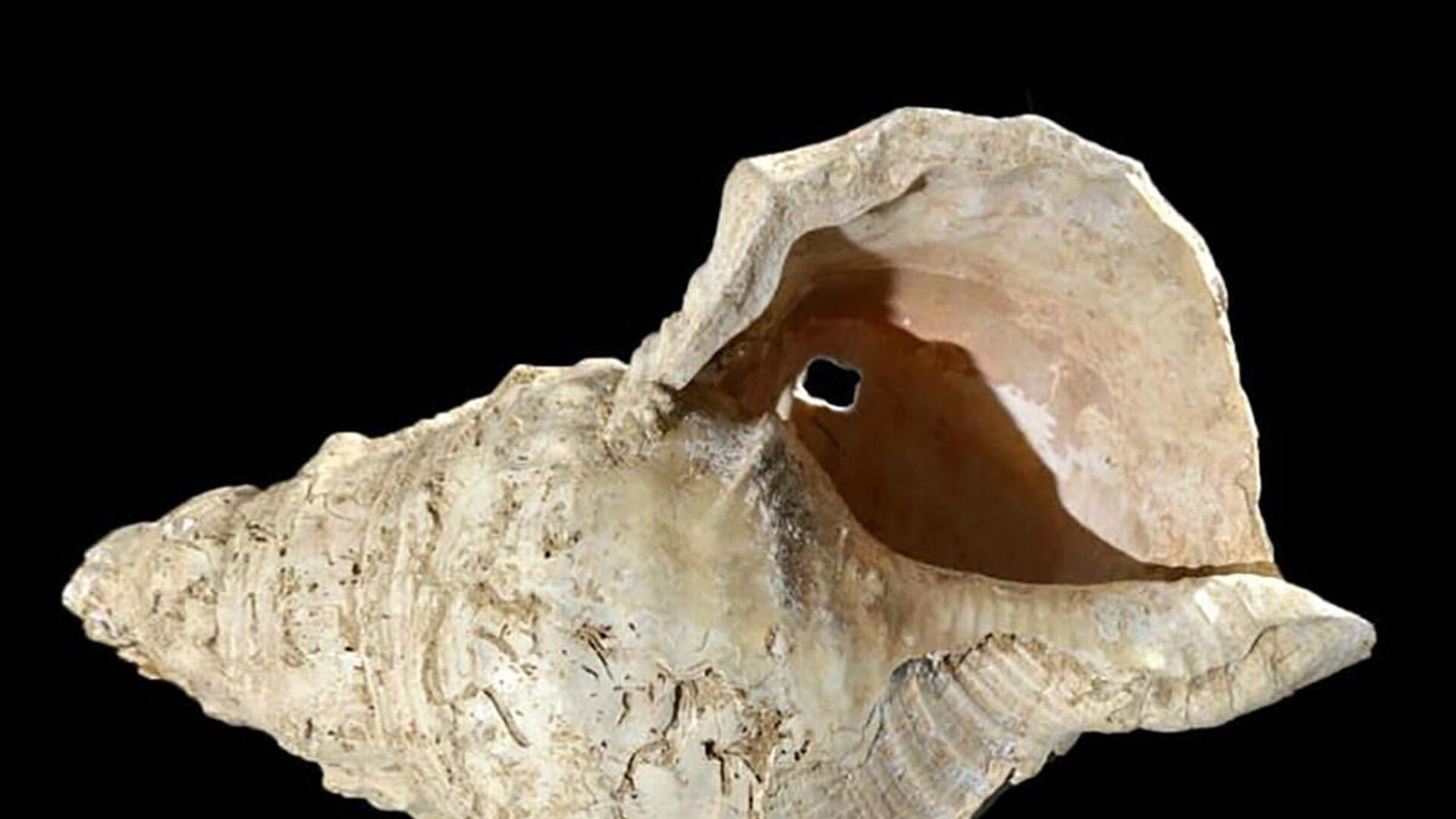 Lastura, která byla nalezena v jeskyni Marsoulas - Sputnik Česká republika, 1920, 02.06.2021