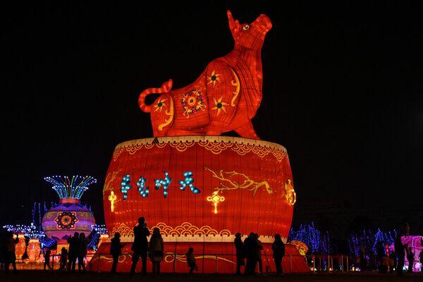 Obří lucerna ve tvaru buvola v parku Wu-chanu v Číně.  - Sputnik Česká republika