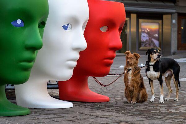 Psi čekají na svého majitele vedle plastových sedadel zobrazujících tváře barvy italské vlajky.  - Sputnik Česká republika