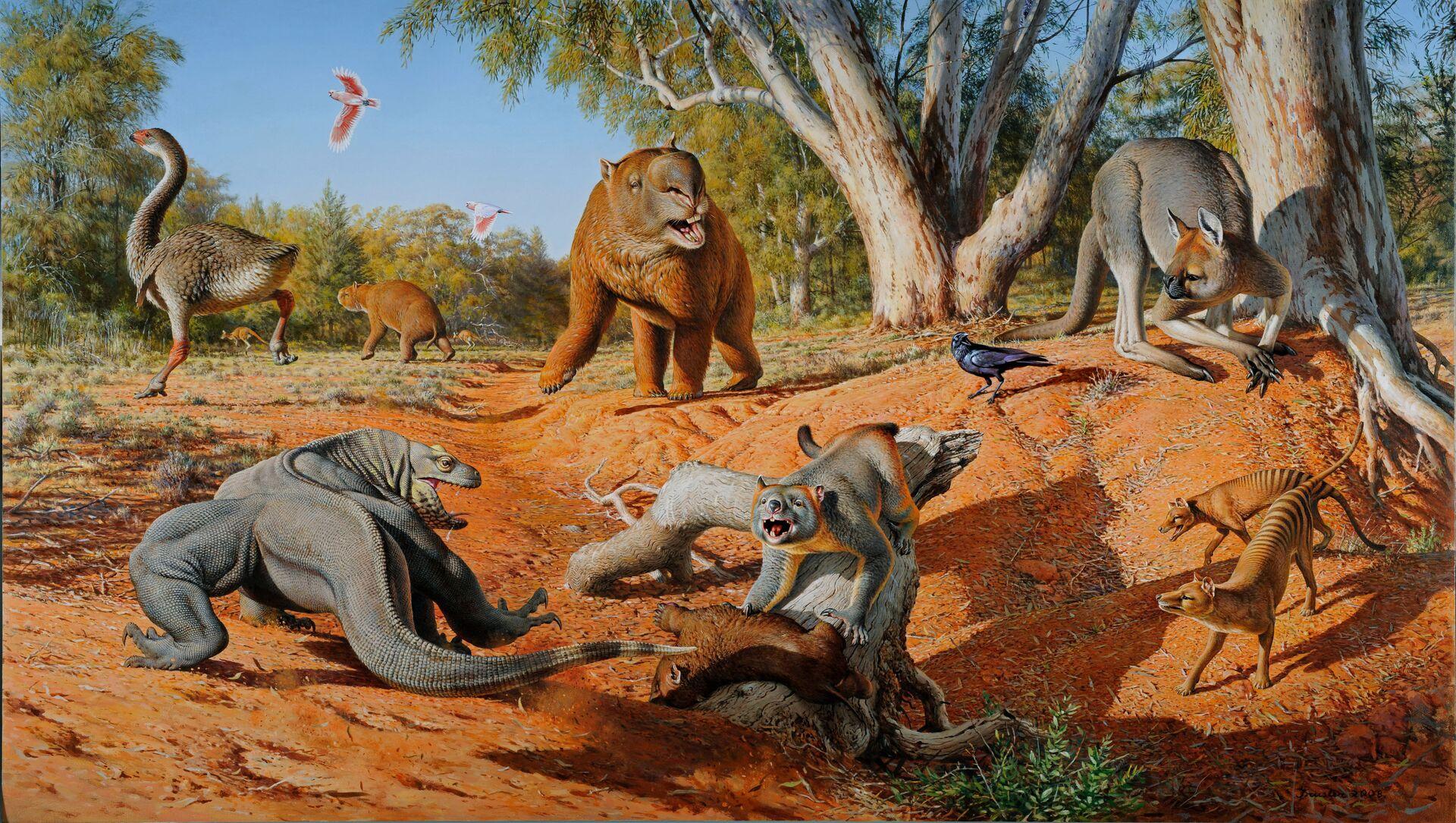 Megafauna Austrálie před 50 tisíci lety - Sputnik Česká republika, 1920, 16.02.2021