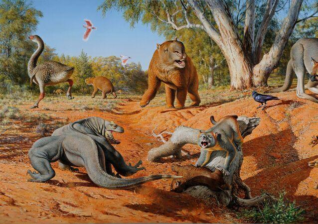 Megafauna Austrálie před 50 tisíci lety