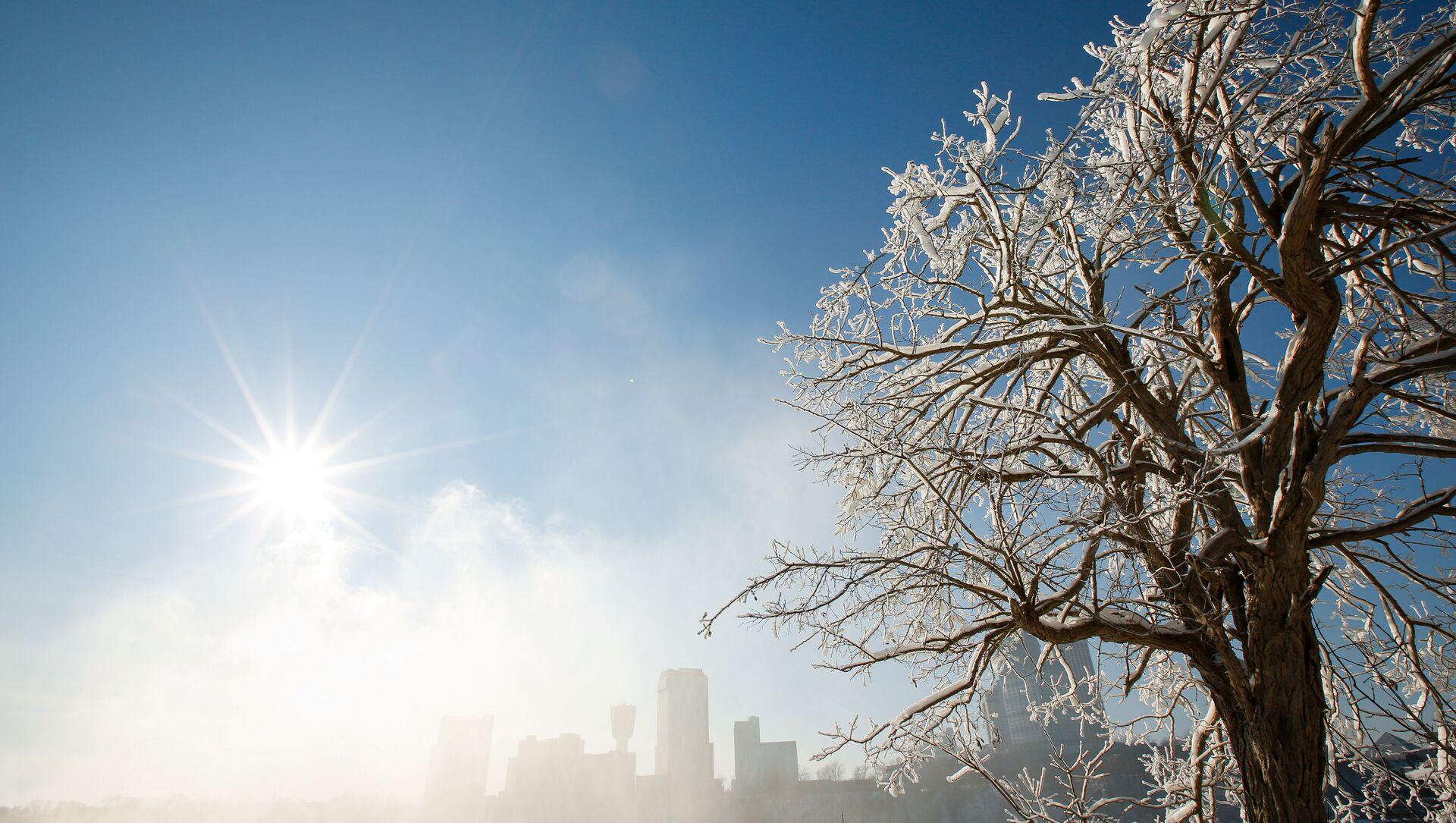 Покрытые льдом деревья в городе Ниагара-Фолс в штате Нью-Йорк  - Sputnik Česká republika, 1920, 15.03.2021