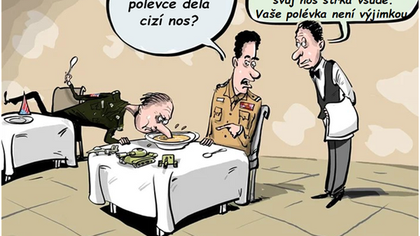 Cizí nos v cizí polévce  - Sputnik Česká republika