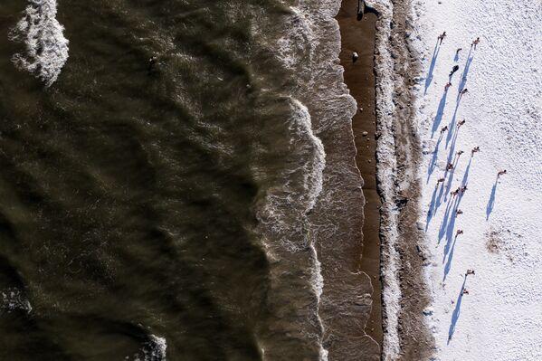 Pohled na břeh Baltského moře shora. - Sputnik Česká republika